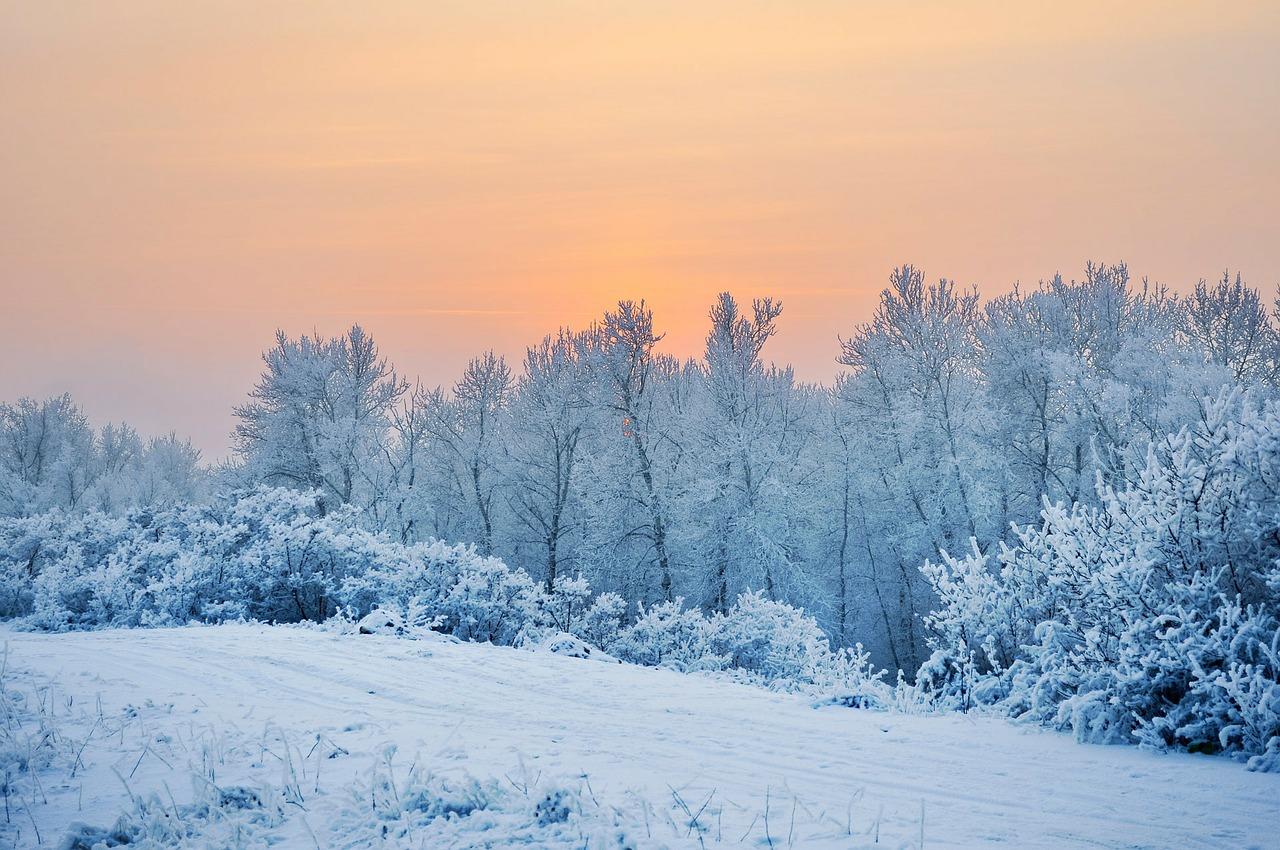 snow-83784_1280